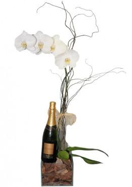 Orquídea Com Chadon