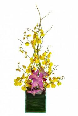 Ikebana de Orquídea