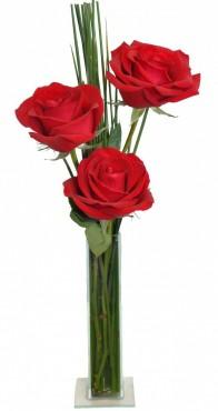 Tri  Rosas Vermelhas