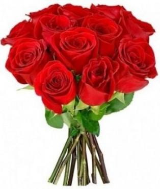 Buque Red Simples Rosas Especias