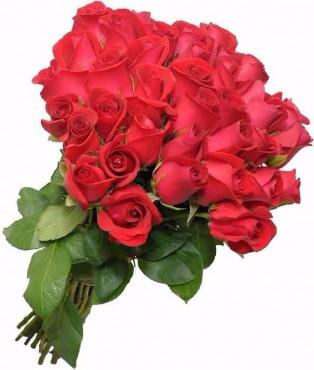 Buquê de Rosas Especias 50 Rosas